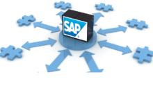 Introducción al SAP