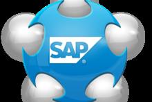 Uso del Sistema SAP